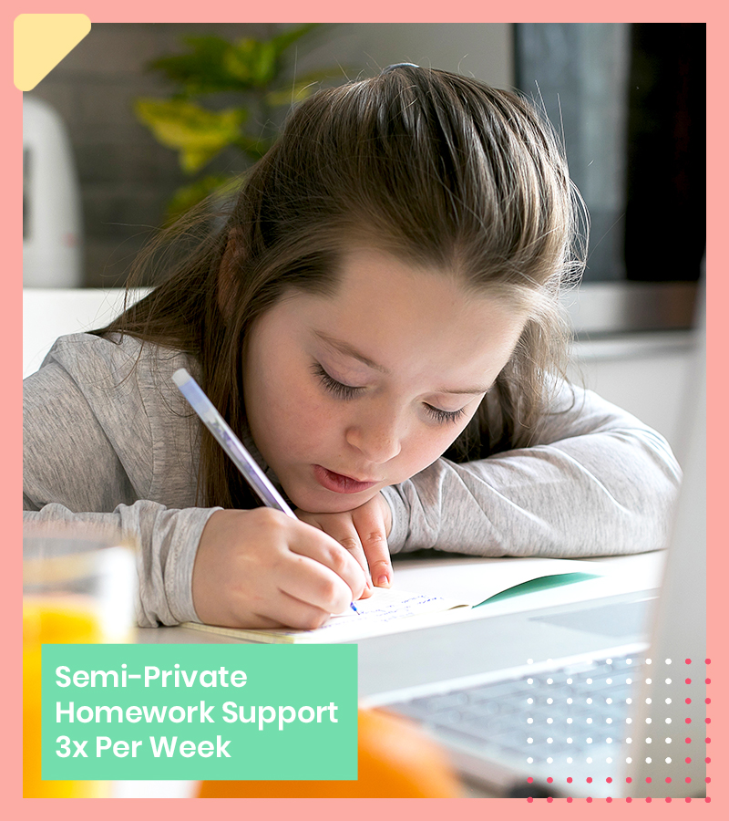 semi private homework support - Semi-Private Classes - LRNG Academy - Shaping Boundless Generations - Online Tutoring | Online Learning | eLearning | Virtual School | Tutoring Service | Virtual Learning