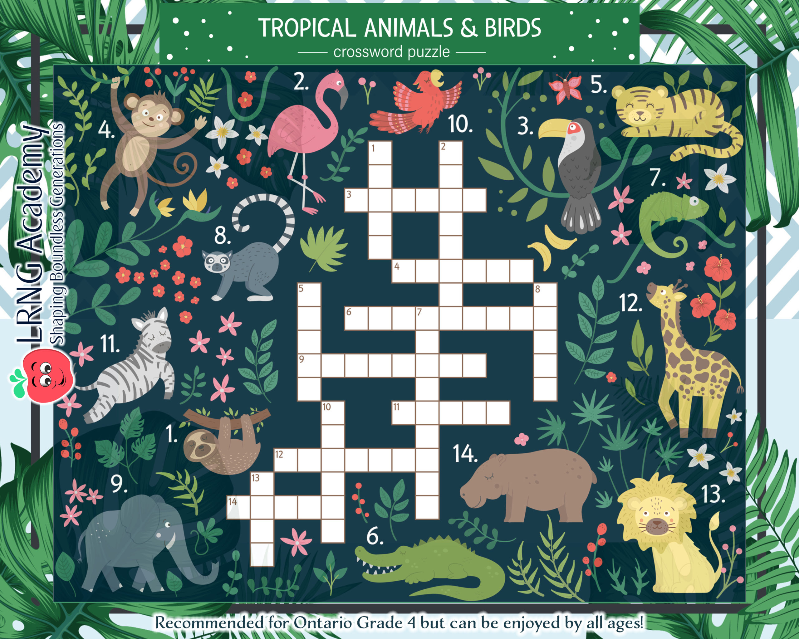 Tropical Animals and Birds scaled - Appie Activities - LRNG Academy - Shaping Boundless Generations - Online Tutoring | Online Learning | eLearning | Virtual School | Tutoring Service | Virtual Learning